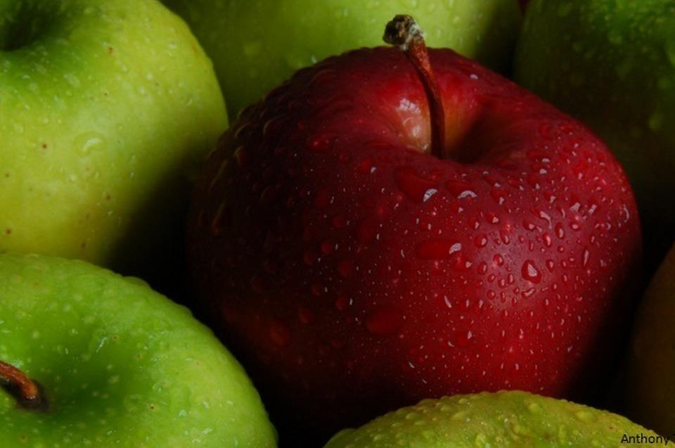 Quelques questions à se poser avec les fruits et légumes frais Partie II