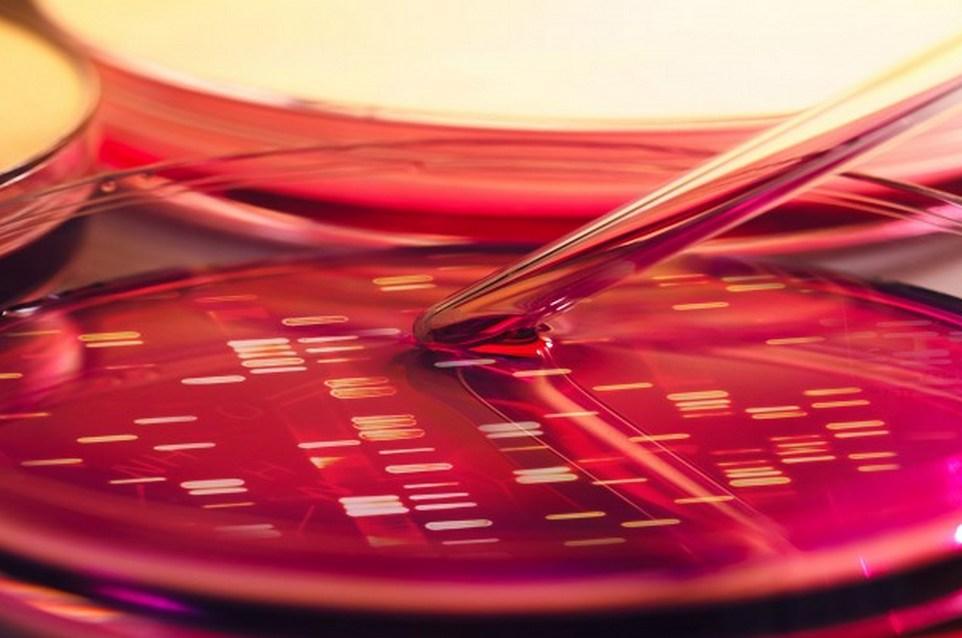 5 faits intéressants sur l'immunothérapie par voie cutanée