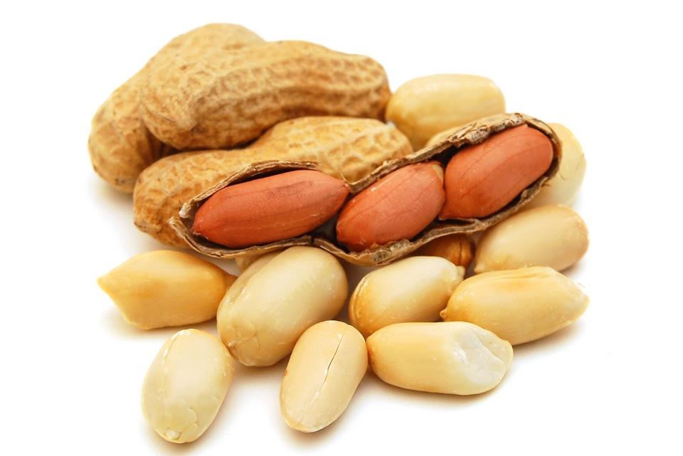 L'introduction hâtive des arachides aurait un effet bénéfique sur la prévention de l'allergie ?