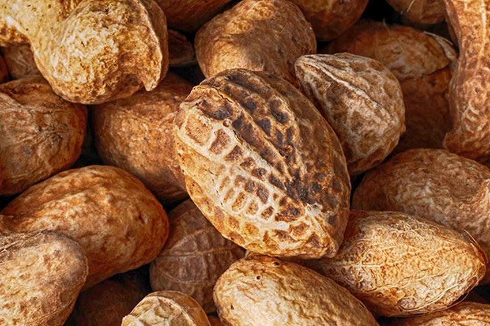 Réduire le risque d'allergie aux arachides