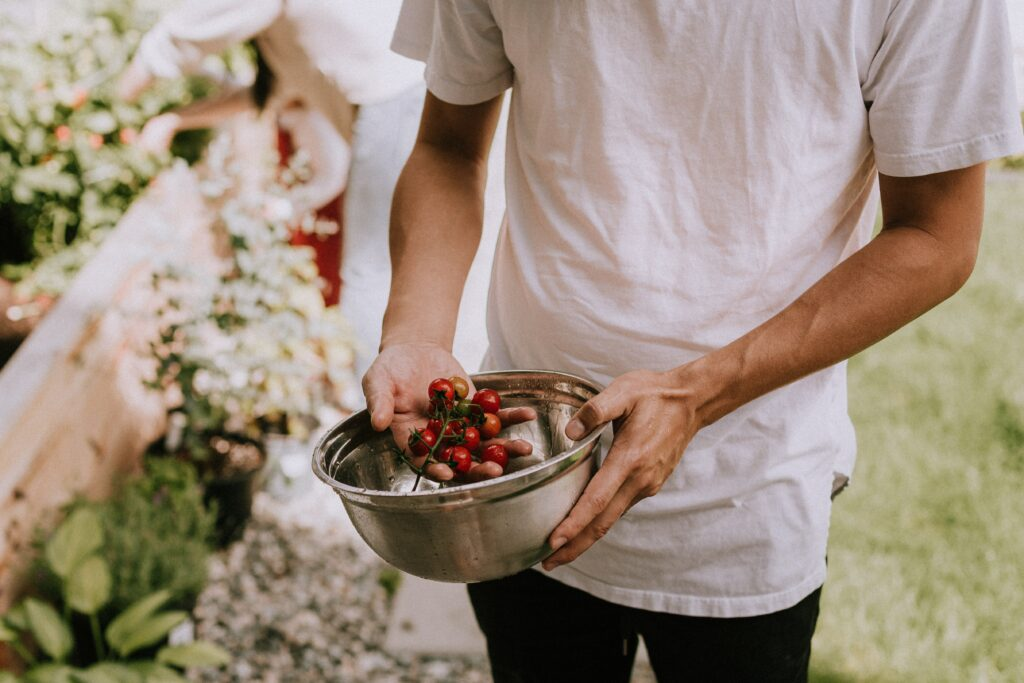 jardinage et allergies alimentaires