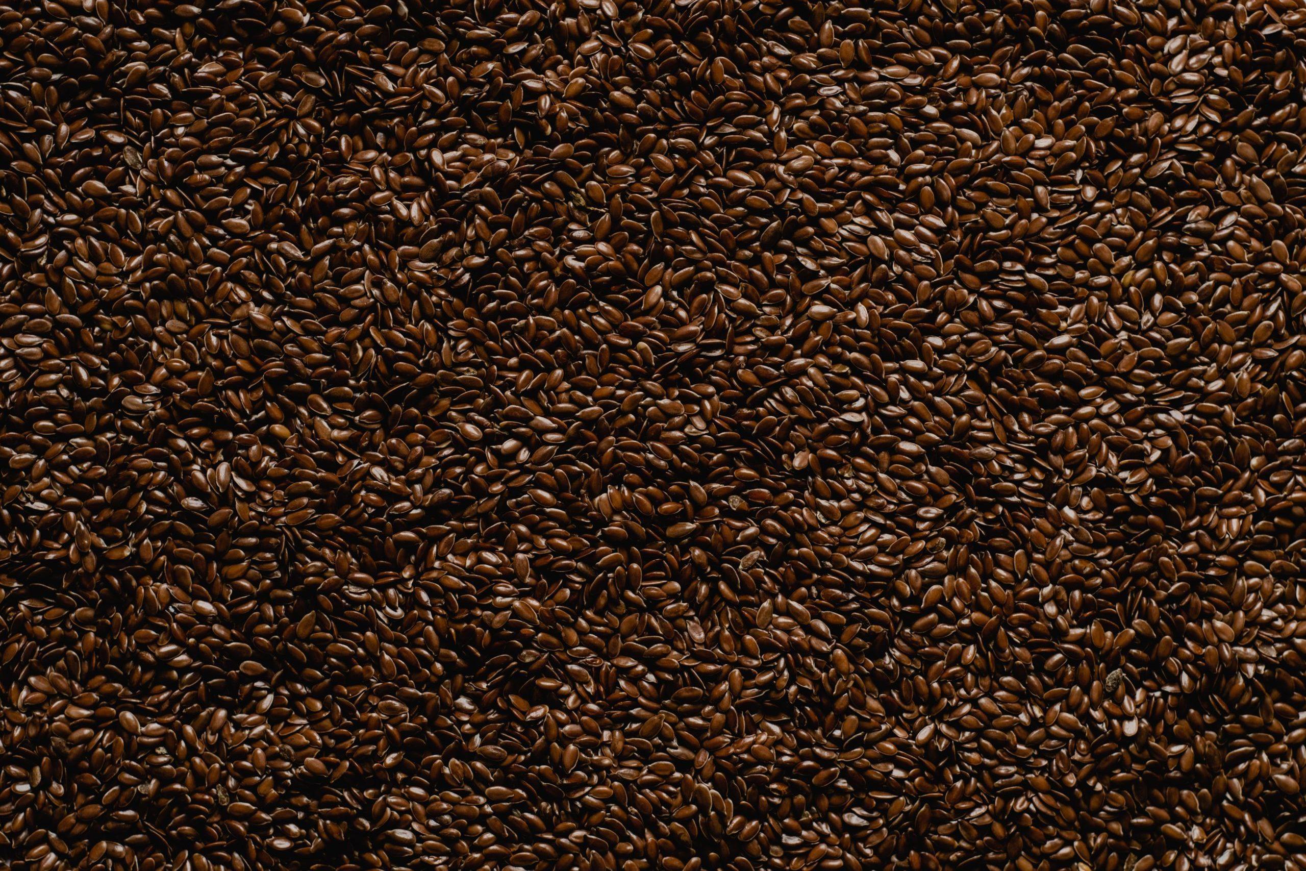 Substituer l'oeuf avec graines de lin